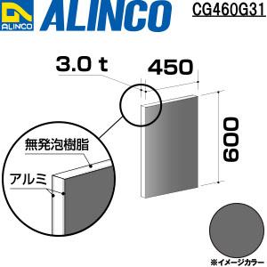 CG460G31